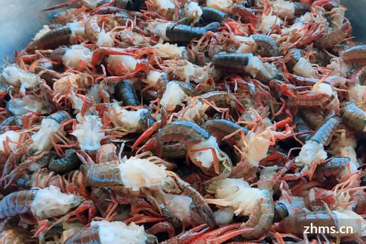 北京什么地方可以开小龙虾店?北京仔仔麻辣龙虾加盟费用是多少呢