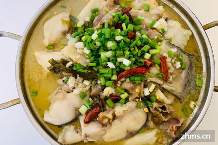 酸菜鱼是哪里的菜系?酸菜鱼的起源是怎样的呢?