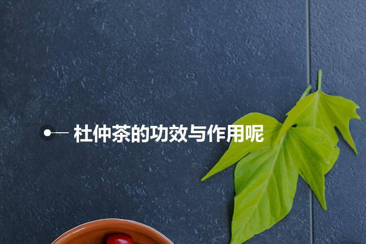 杜仲茶的功效与作用有什么