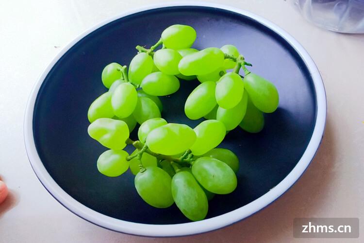 巨峰葡萄为什么那么便宜