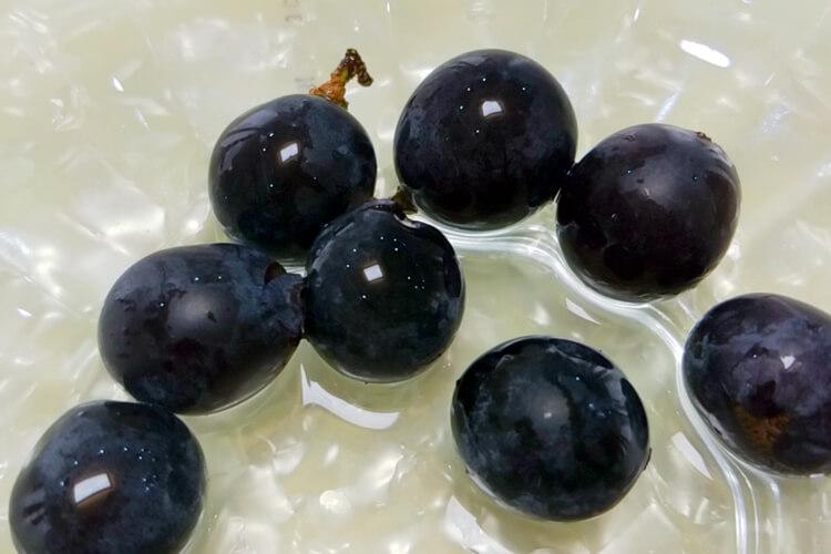 绿色葡萄好好吃啊,日本最贵的绿色葡萄叫什么?