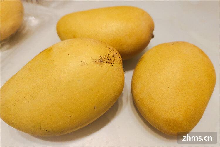 哪种芒果好吃没有丝?芒果怎么切?