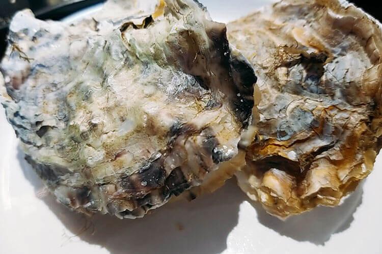 生蚝吃起来鲜嫩,口感软滑,请问开壳的生蚝要怎么清洗?