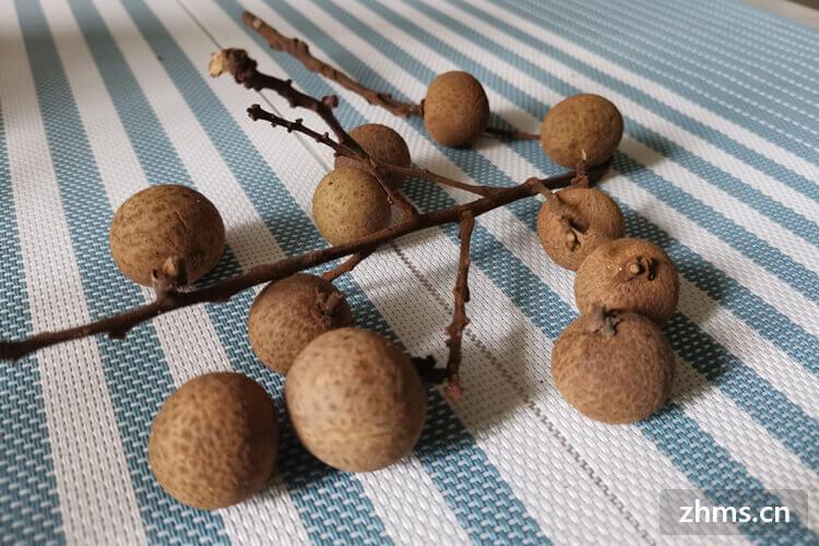 冬季桂圆哪里出的好一些?桂圆能一次吃很多吗?