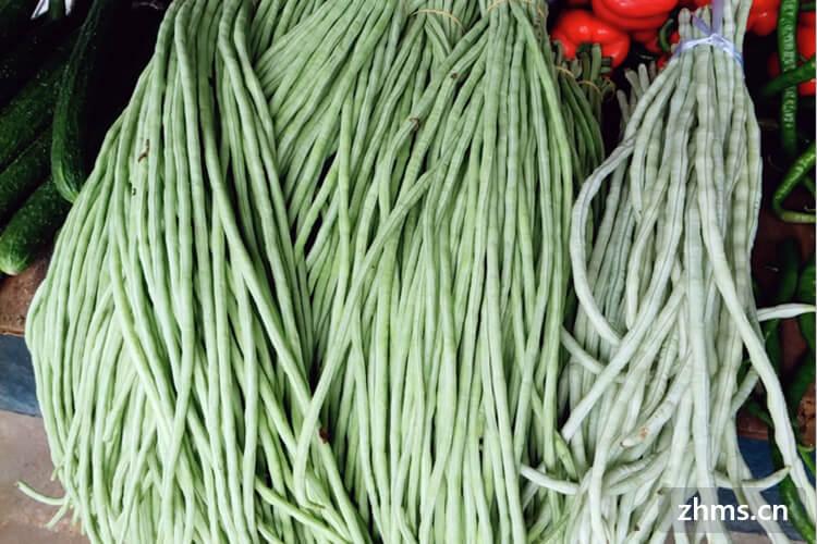 8月适合种植什么蔬菜