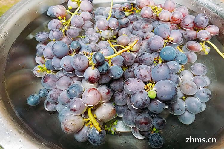 怎么挑选成串葡萄