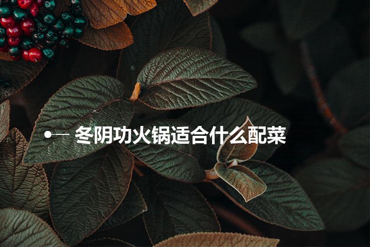 冬阴功火锅适合什么配菜