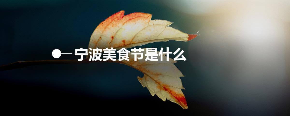 宁波美食节是什么