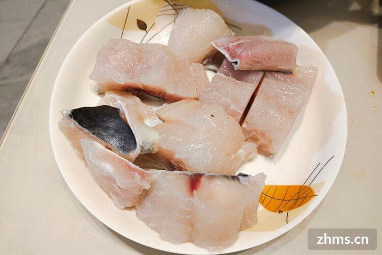 巴沙鱼和龙利鱼哪个贵? 两者有什么区别?