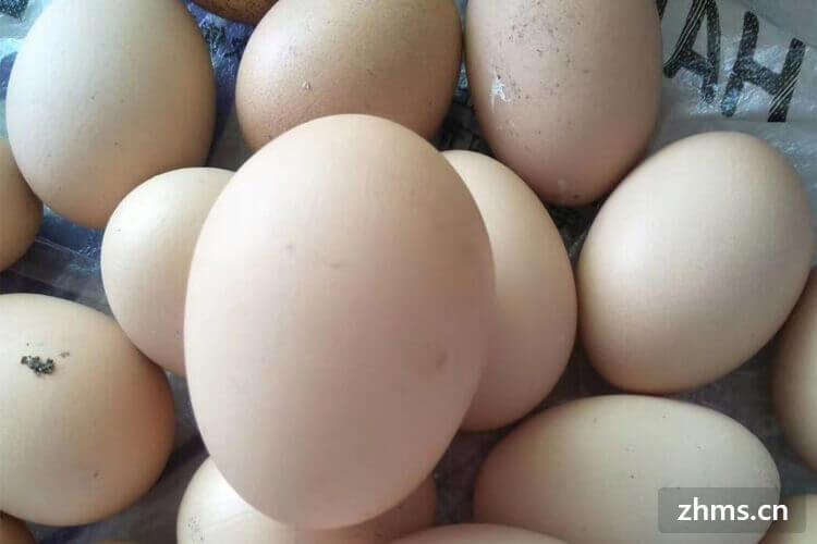 鸡蛋放时间长了散黄了还能吃吗?购买时怎么挑选新鲜鸡蛋?
