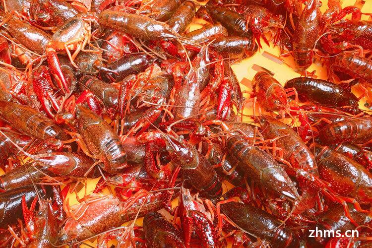 一斤小龙虾蒸多久