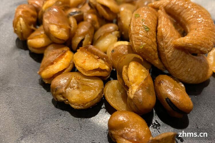 土豆项目加盟品牌需要多少钱