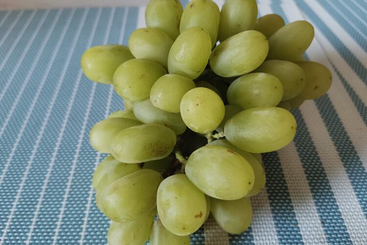 我喜欢吃葡萄,想知道最贵最好吃的葡萄品种有哪些?