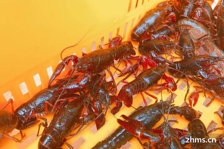 湖北美食小龙虾有哪些口味