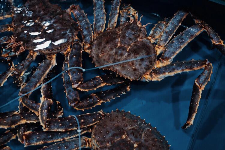 龙虾还有螃蟹都是可以蒸出来的,龙虾螃蟹蒸多久呀?
