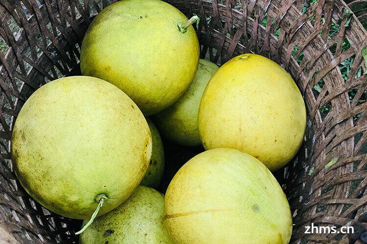 中秋送柚子代表什么意思