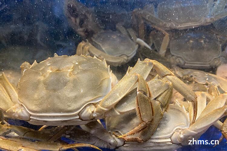 煮螃蟹需要几分钟