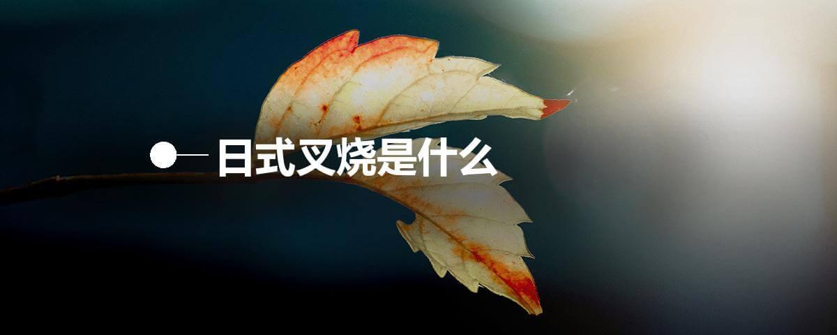 日式叉烧是什么