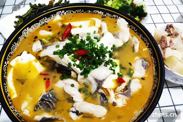 郑州外卖酸菜鱼加盟,在县城加盟可以吗?每年大概收益是多少?