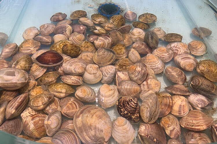 有个问题想问问大家,文蛤汤第二天还能吃吗?