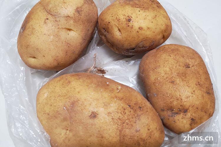 土豆怎么快速炖烂?