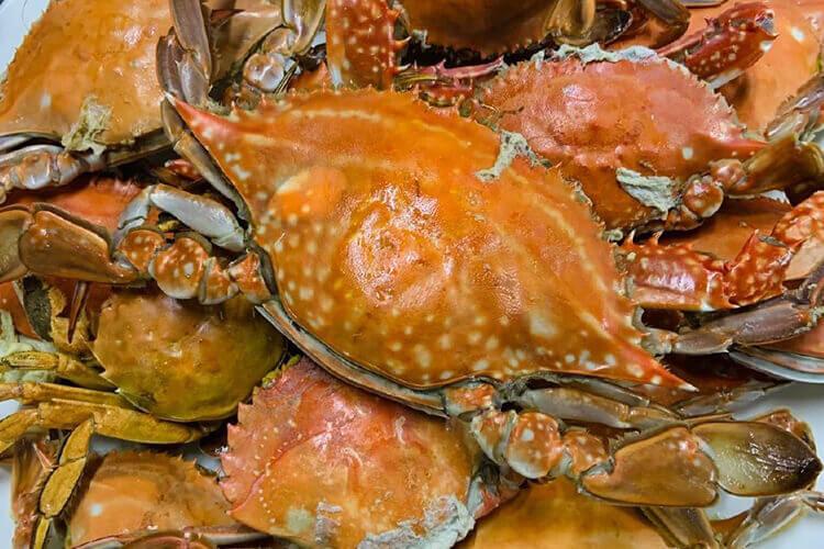 超级爱吃梭子蟹,梭子蟹肉是酸的吗?