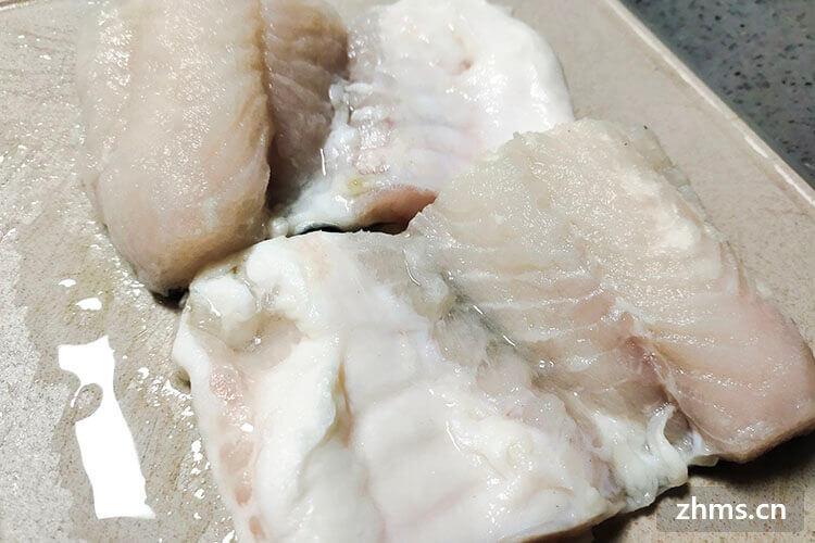 巴沙鱼片和龙利鱼一样吗