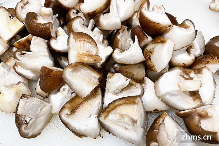 蘑菇放火锅里煮多久