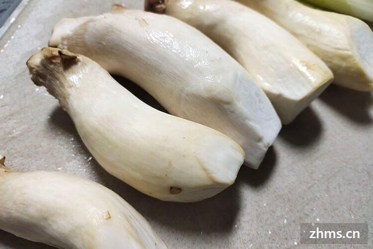 如何判断杏鲍菇是不是坏了