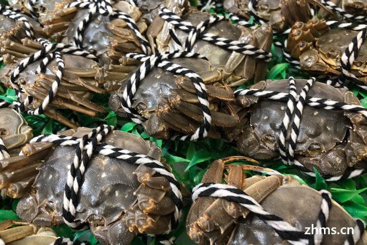 冷水螃蟹要蒸多久才能蒸熟