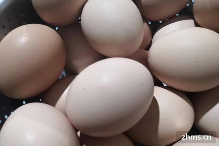 鸭蛋和鸡蛋怎么区分