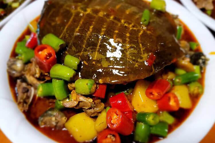 甲鱼的吃法比较多,大酒店的清蒸甲鱼怎么做?
