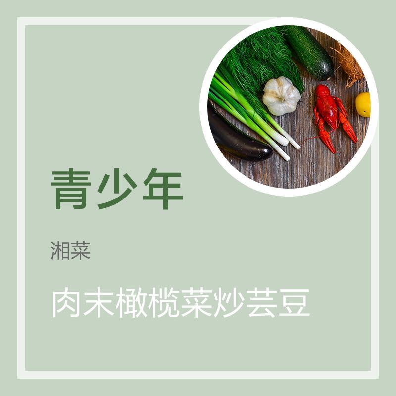 肉末橄榄菜炒芸豆