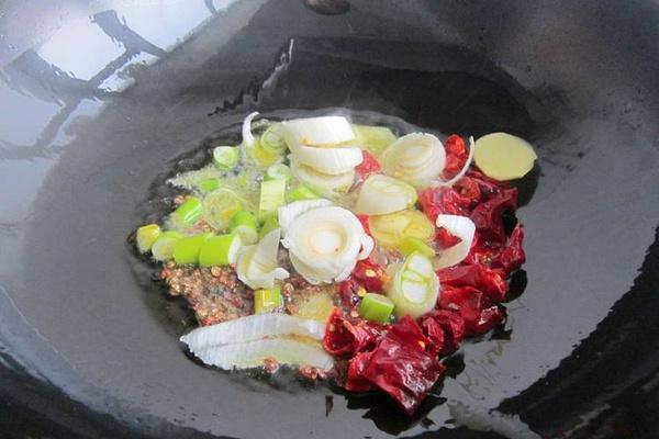 煮羊肉放什么调料?当然放水煮牛肉的调料啊第三步