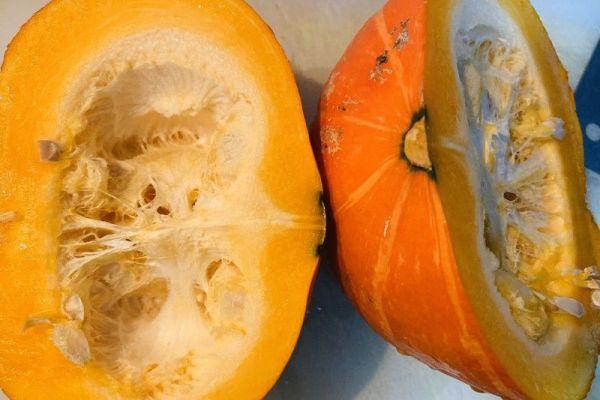 蔬菜馒头,用手工诠释食物的质朴第一步