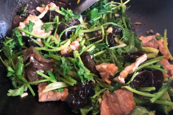 木耳肉片,猪肉嫩滑,木耳爽脆,一道非常开胃的下饭菜第十二步
