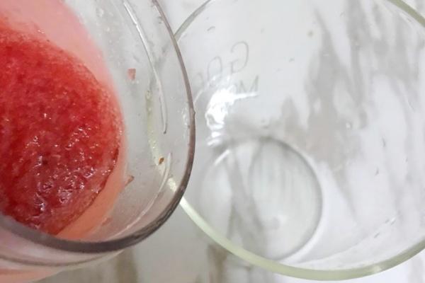 西芹蔓越莓汁,酸酸甜甜好滋味第八步
