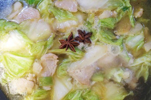 东北家常菜之猪肉白菜炖粉条,带你感受东北浓厚的乡土气息第九步