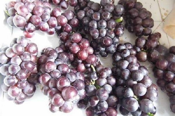 好喝营养的葡萄酒,做法也很简单第一步