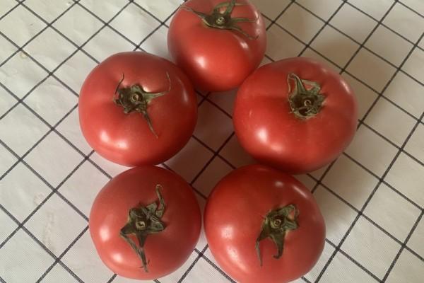教你做出比kfc番茄酱更好吃的番茄酱第一步