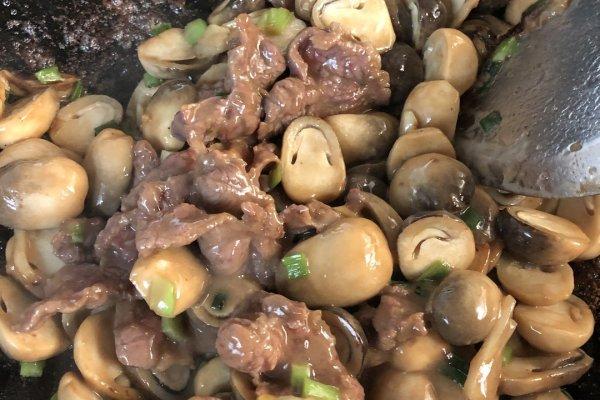 草菇炒肉,一款高营养食品第九步