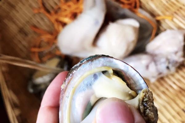 虫草鲍鱼炖汤,秋季营养汤煲首选第四步