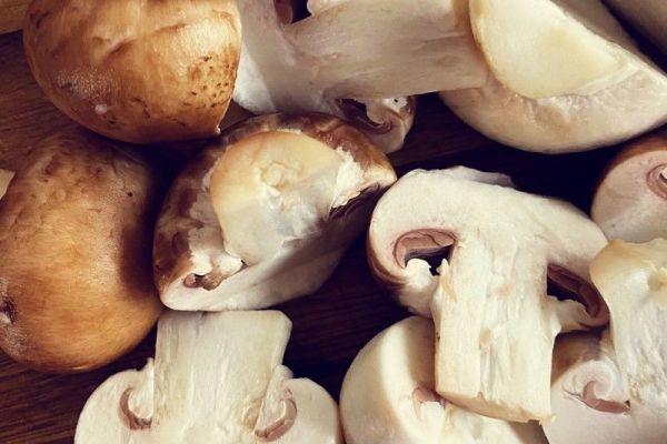 德国经典小吃——素炒蘑菇第五步