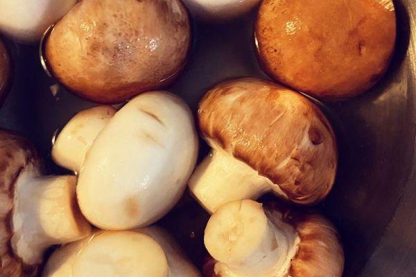 德国经典小吃——素炒蘑菇第四步